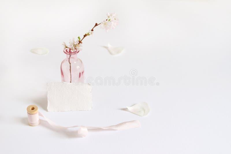 Weibliche Frühlingsbriefpapier-Modellszene mit einer Büttenpapiergrußkarte, Spule des Seidenbands und Kirschblüten herein lizenzfreies stockfoto