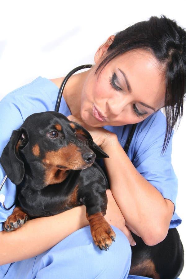 Weibliche Gesundheitspflege-Arbeitskraft mit Hund stockbild