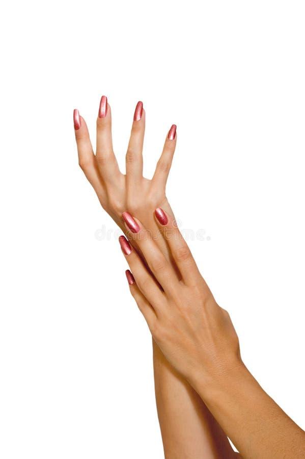 Weibliche Hände stockfotos