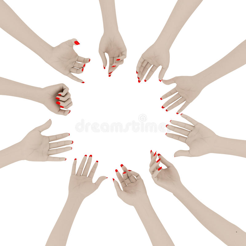 Weibliche Hände vektor abbildung