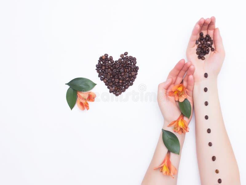 Weibliche Hände auf einem weißen Hintergrund mit Kaffeebohnen und Hibiscusblumen, Herz von Kaffeebohnen, Aroma, Konzept der Liebe stockbild