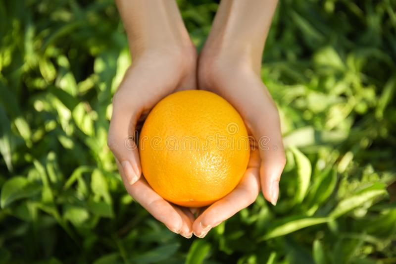 Weibliche Hände, die ganze Orange auf grünem Hintergrund halten lizenzfreie stockfotos