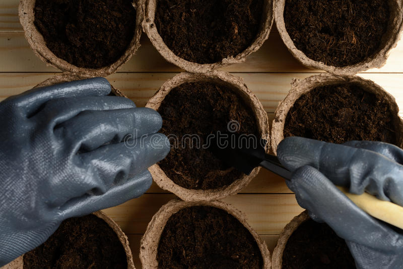 Weibliche Hände, die Samen in einem Torftopf pflanzen lizenzfreie stockfotos