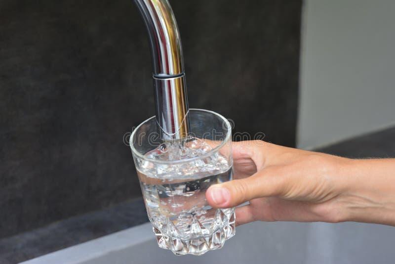 Weibliche Hände, die Wasser in der Glasschale gießen stockbilder