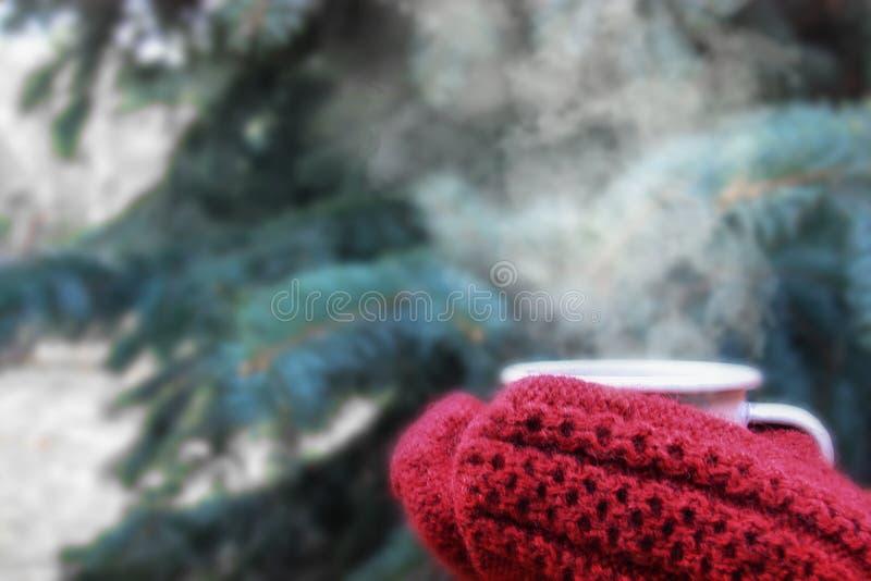 Weibliche Hände im Rot strickten die Handschuhe, die dämpfende Schale heißen Kaffee oder Tee nahe TannenWeihnachtsbaum halten Win stockfoto