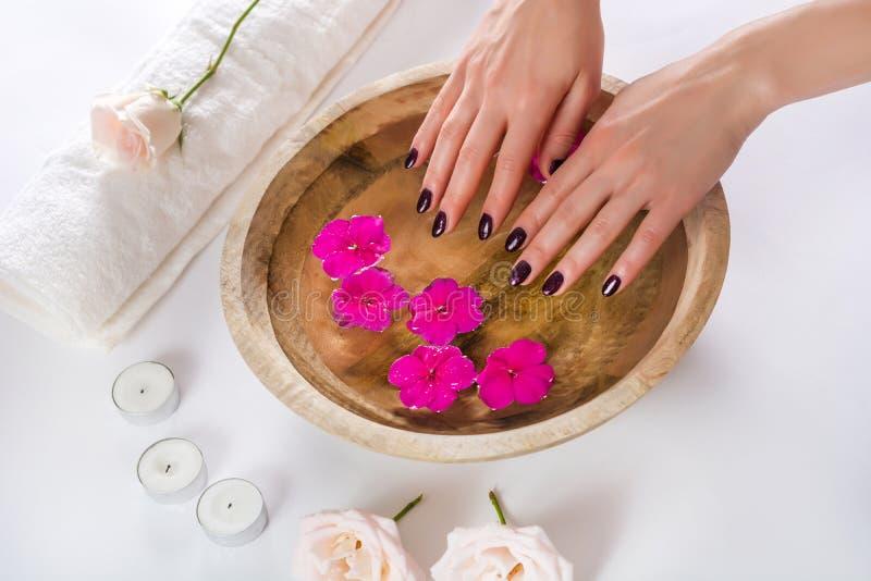 Weibliche Hände mit manikürten Modenägeln mit purpurrotem Lack in einer hölzernen Schüssel mit Wasser und purpurroter Blume lizenzfreie stockfotos