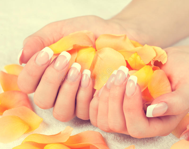Weibliche Hände mit perfekter französischer Maniküre stockbilder