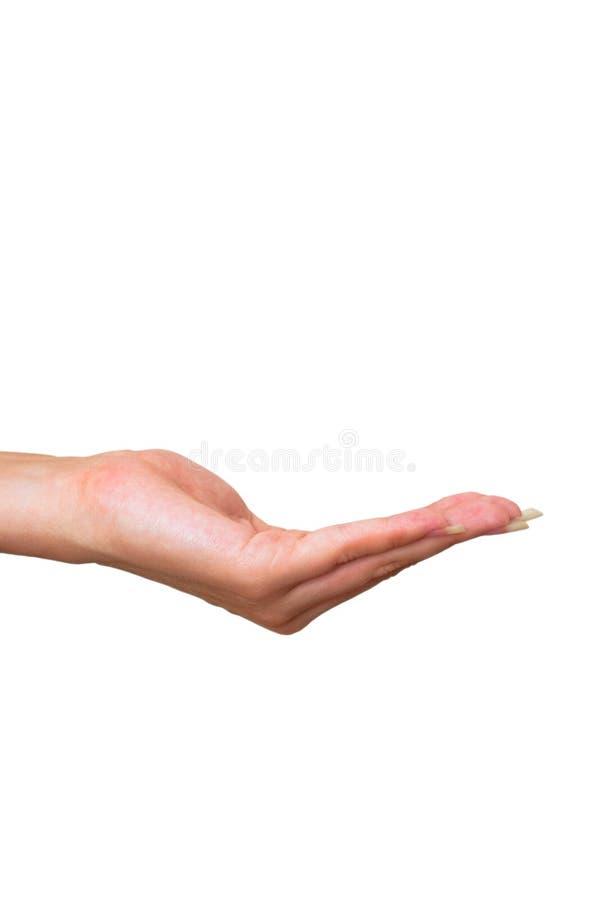Weibliche Hand stockbilder