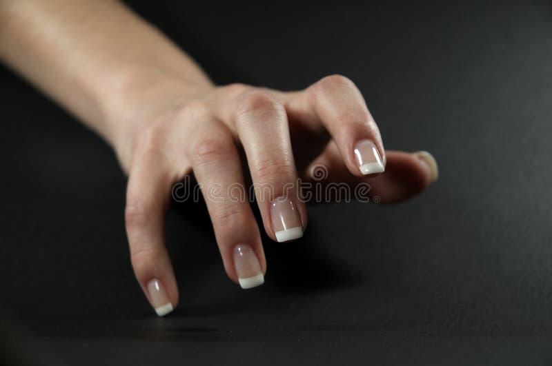 Weibliche Hand 3 stockfoto