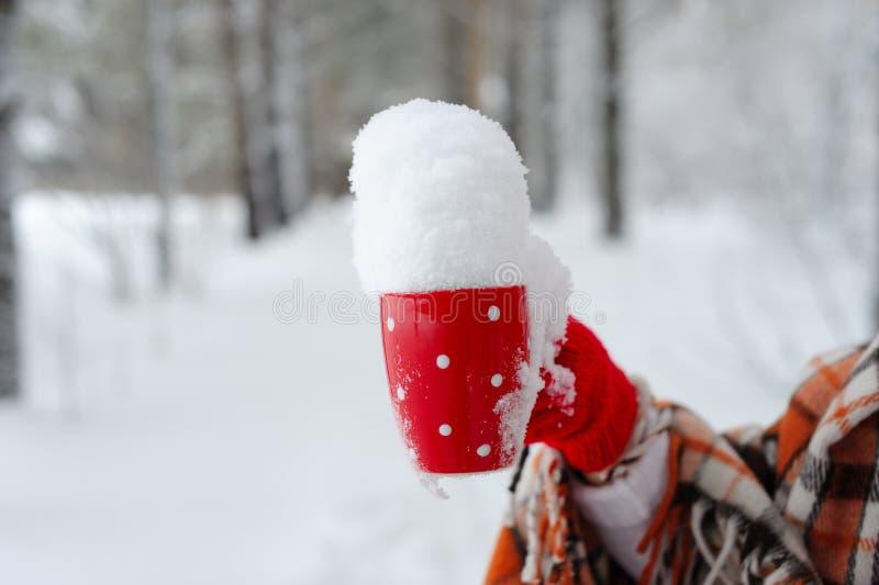 Weibliche Hand des Winters, die eine rote Schale hält stockbild