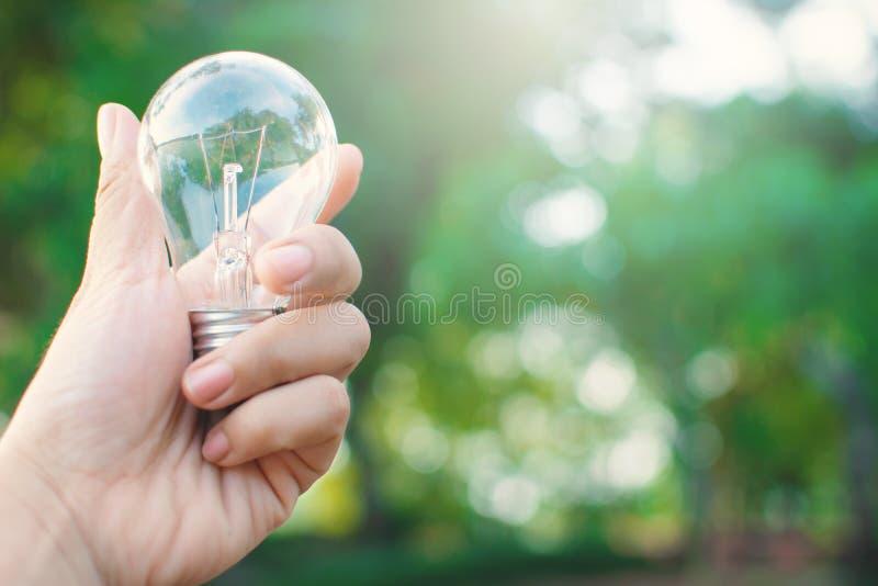 Weibliche Hand, die Glühlampe hält stockbilder