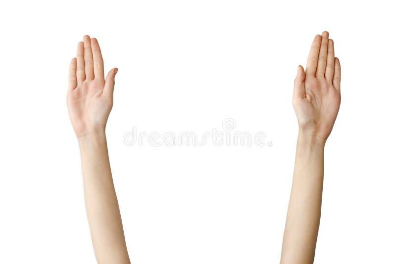Weibliche Hand, die heraus auf lokalisiertem Hintergrund erreicht stockfotos