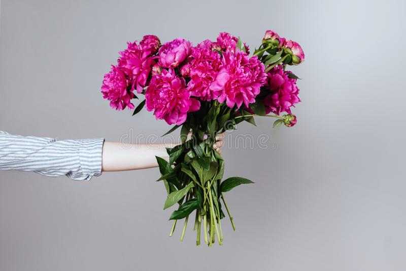 Weibliche Hand, die schönen Blumenstrauß mit wohlriechenden Pfingstrosen hält lizenzfreie stockfotos