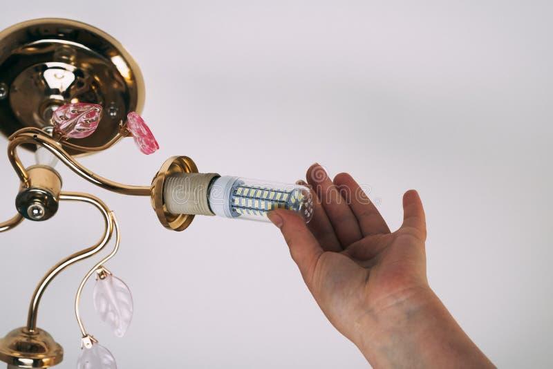 Weibliche Hand fügt eine Glühlampe in die Hülse mit Innengewinde ein Installation von Lampen des Haushalts LED der Maisart, in lizenzfreie stockfotos