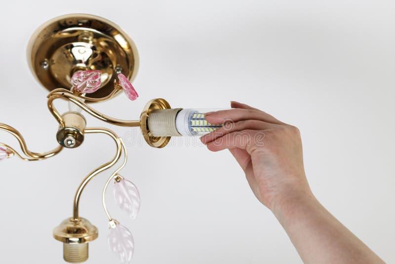 Weibliche Hand fügt eine Glühlampe in die Hülse mit Innengewinde ein Installation von Lampen des Haushalts LED der Maisart, in lizenzfreie stockfotografie