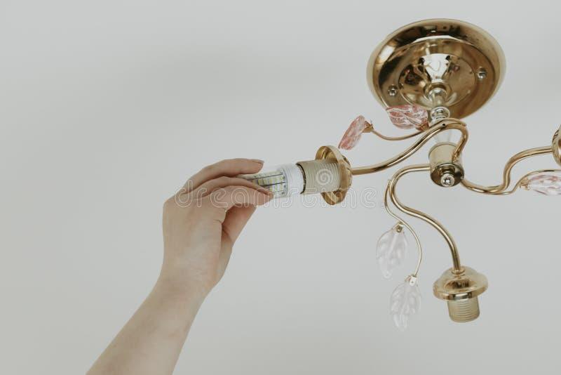 Weibliche Hand fügt eine Glühlampe in die Hülse mit Innengewinde ein sie glänzt Installation von Lampen des Haushalts LED der stockfotografie