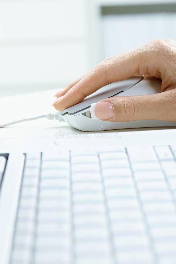 Weibliche Hand unter Verwendung der Computermaus stockfotos
