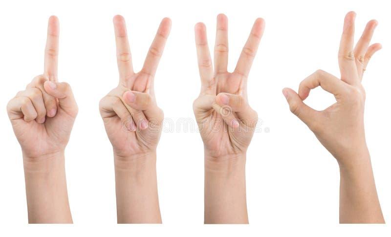Weibliche Handshow gestikuliert 1 O.K. 2 3, das auf weißem Hintergrund lokalisiert wird stockfotografie
