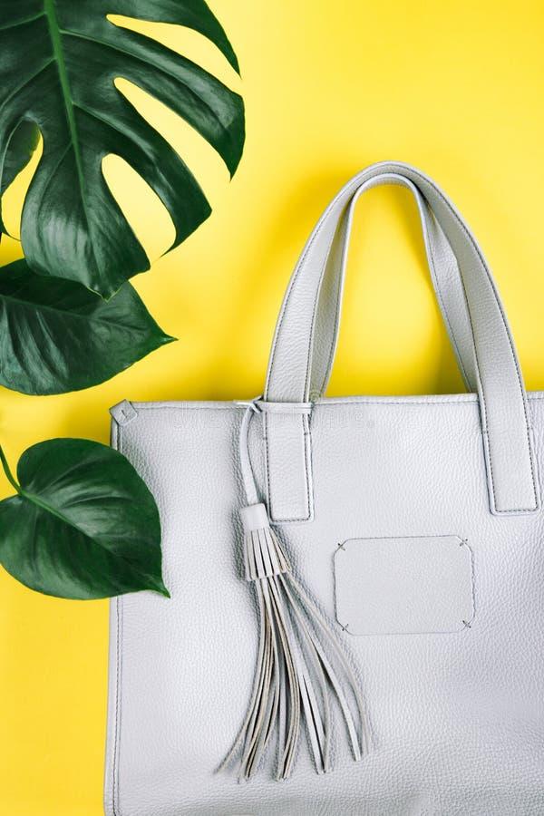 Weibliche Handtasche und grünes Blatt stockfotos