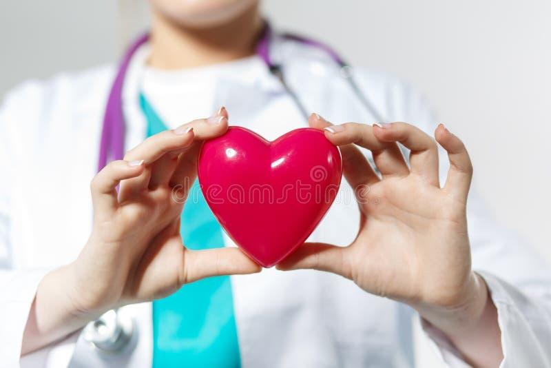 Weibliche Medizindoktorhände, die Spielzeugherz halten stockfoto
