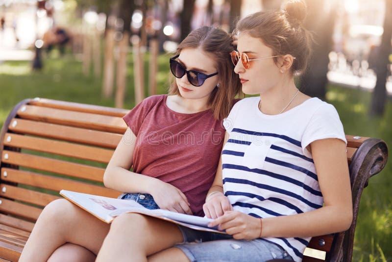 Weibliche Mitschüler sitzen nah miteinander, lesen Informationen von einem Buch, während auf Holzbank sitzen Sie, haben fokussier lizenzfreie stockbilder