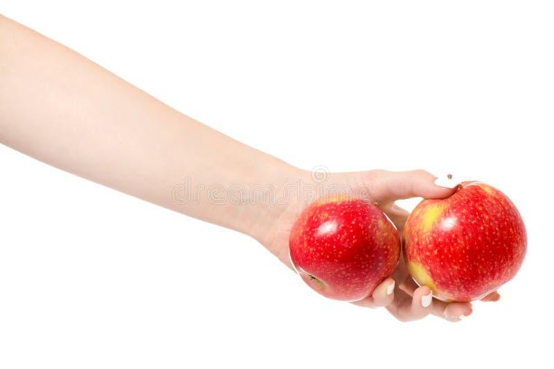 Weibliche rote Äpfel der Hand zwei lizenzfreies stockbild
