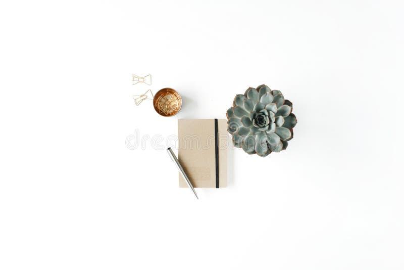 Weiblicher Arbeitsplatz der flachen Lage mit Succulent lizenzfreies stockfoto