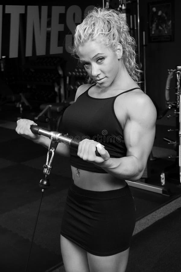 Weiblicher Bodybuilder stockfotografie
