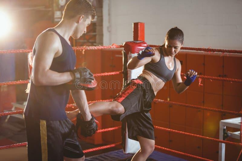 Weiblicher Boxer, der mit Trainer ihren Trainer kickboxing übt lizenzfreies stockfoto