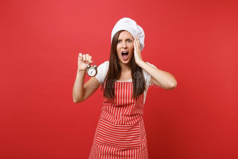 Weiblicher Chefkoch oder -bäcker der Hausfrau in gestreiftem Schutzblech, weißes T-Shirt, Toquechefhut auf rotem Wandhintergrund stockfotografie