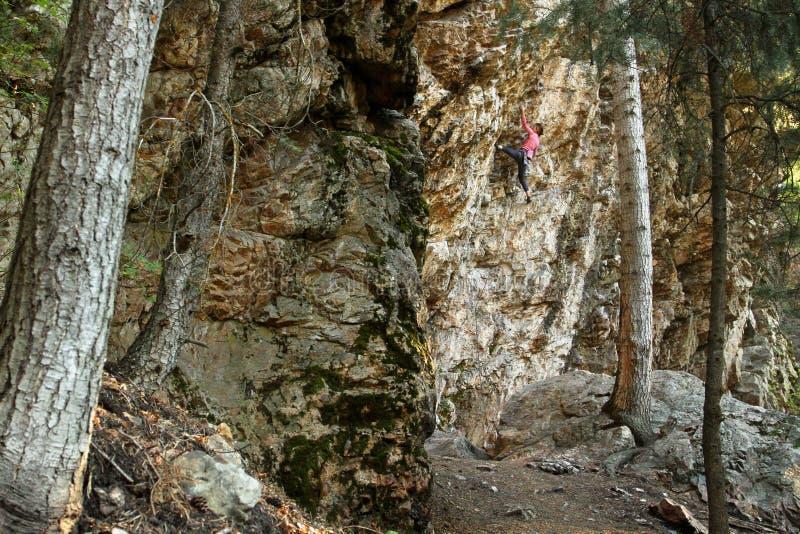 Weiblicher Felsen-Bergsteiger   stockbild