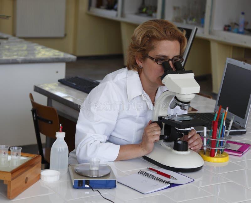 Weiblicher Forscher stockfotos