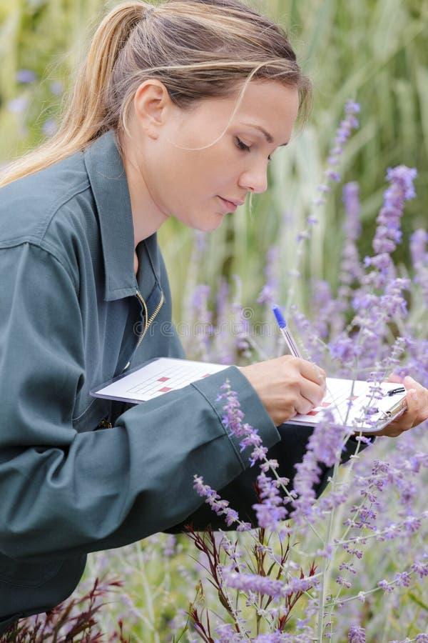 Weiblicher Gärtner, der Anmerkungen auf Klemmbrett macht stockfotografie