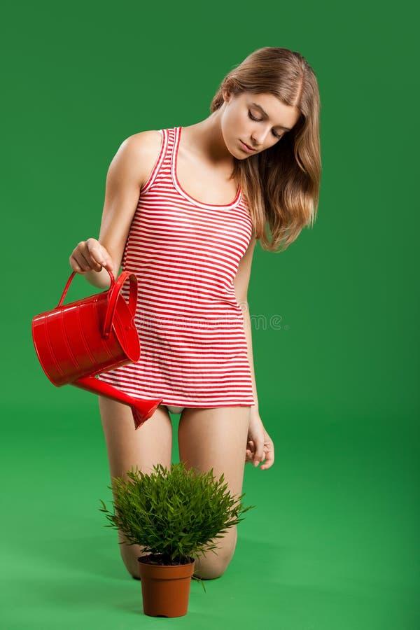 Weiblicher junger Gärtner stockbilder