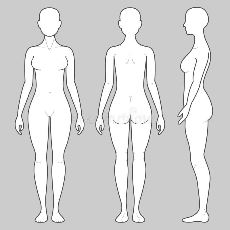 Weiblicher Körper vektor abbildung. Illustration von kopf - 54579948