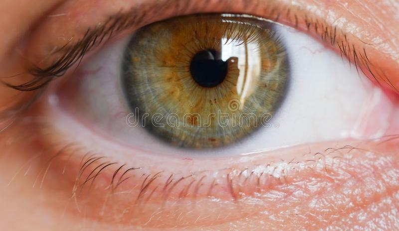 Weiblicher Nahaufnahmeschuß des menschlichen Auges lizenzfreie stockfotografie