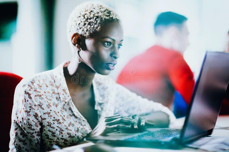 Weiblicher Programmierer, der an IT-Projekt arbeitet lizenzfreie stockbilder