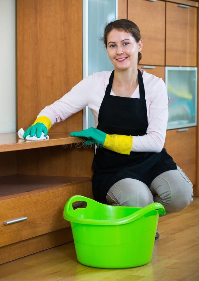Weiblicher Reiniger, der zuhause arbeitet lizenzfreie stockfotos