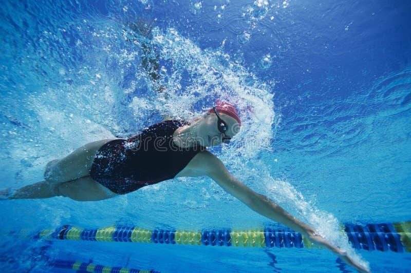 Weiblicher Schwimmer, der underwater im Pool läuft stockbild