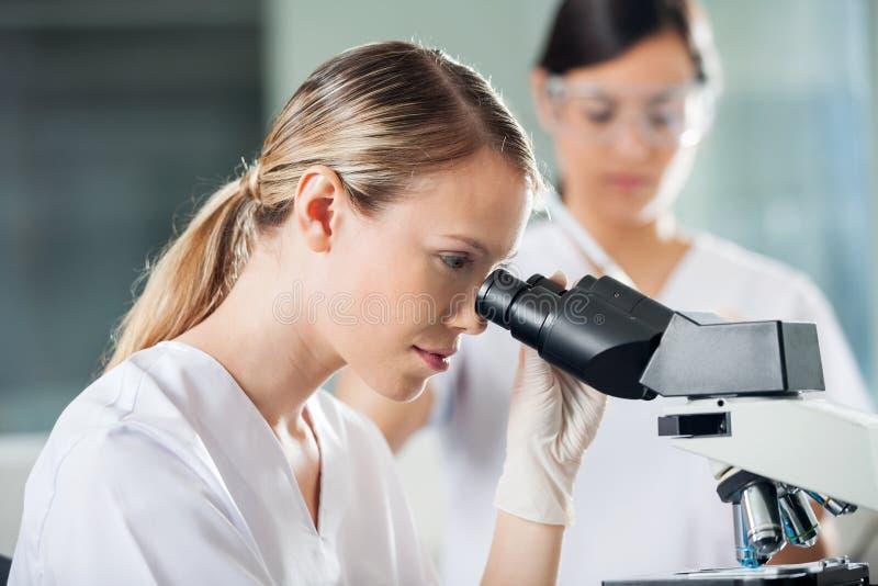 Weiblicher Techniker Looking Into Microscope lizenzfreie stockbilder