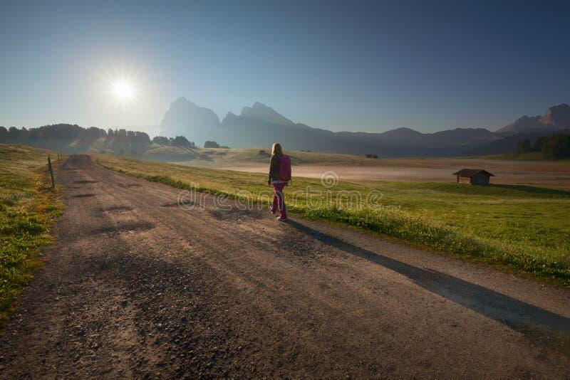 Weiblicher Wanderer, der zum aufgehende Sonne in Süd-Tirol-Alpen geht stockfotografie
