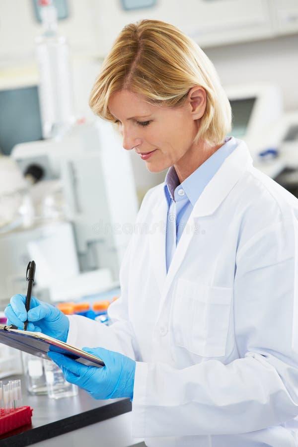 Weiblicher Wissenschaftler, der im Labor arbeitet lizenzfreies stockfoto