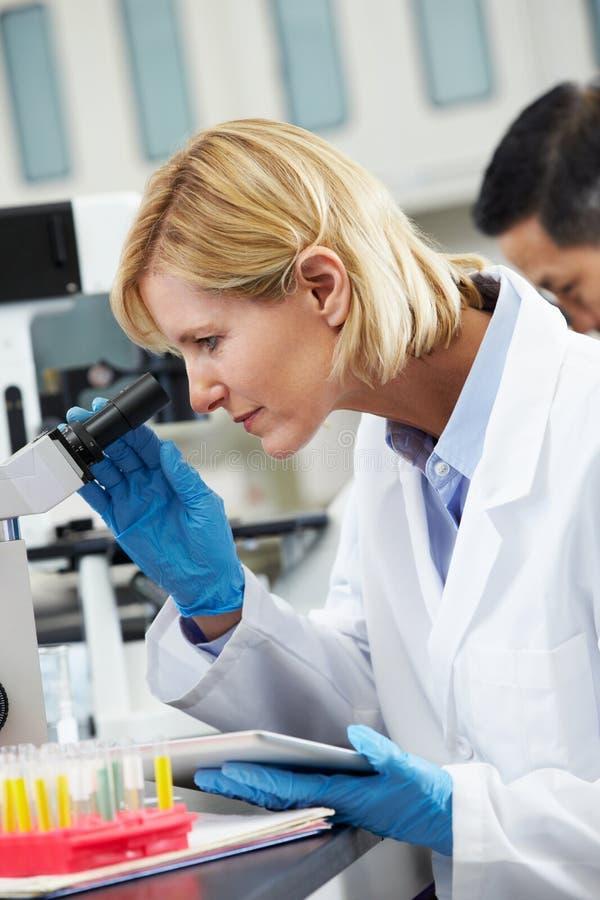 Weiblicher Wissenschaftler, der Tablette-Computer im Labor verwendet lizenzfreies stockbild