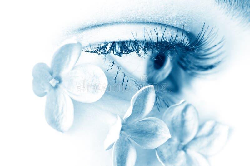 Weibliches Auge stockbilder