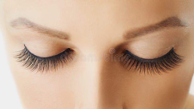 Weibliches Auge mit den extremen langen falschen Wimpern Wimpererweiterungen, -make-up, -kosmetik, -schönheit und -Hautpflege stockfotografie
