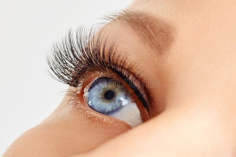 Weibliches Auge mit extremen langen Peitschen des falschen Auges Wimpererweiterungen, Make-up, Kosmetik, Sch?nheit lizenzfreie stockfotos