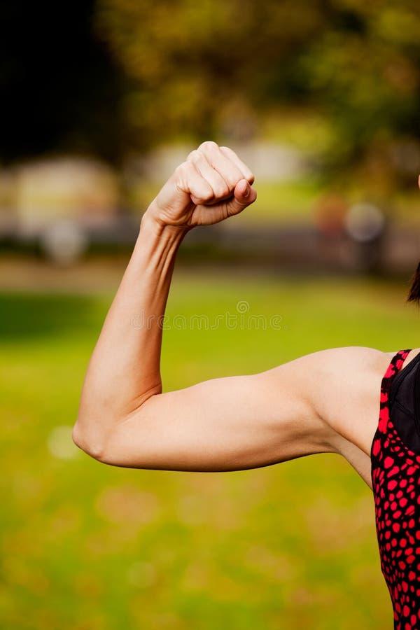 Weibliches Bicep lizenzfreie stockfotografie