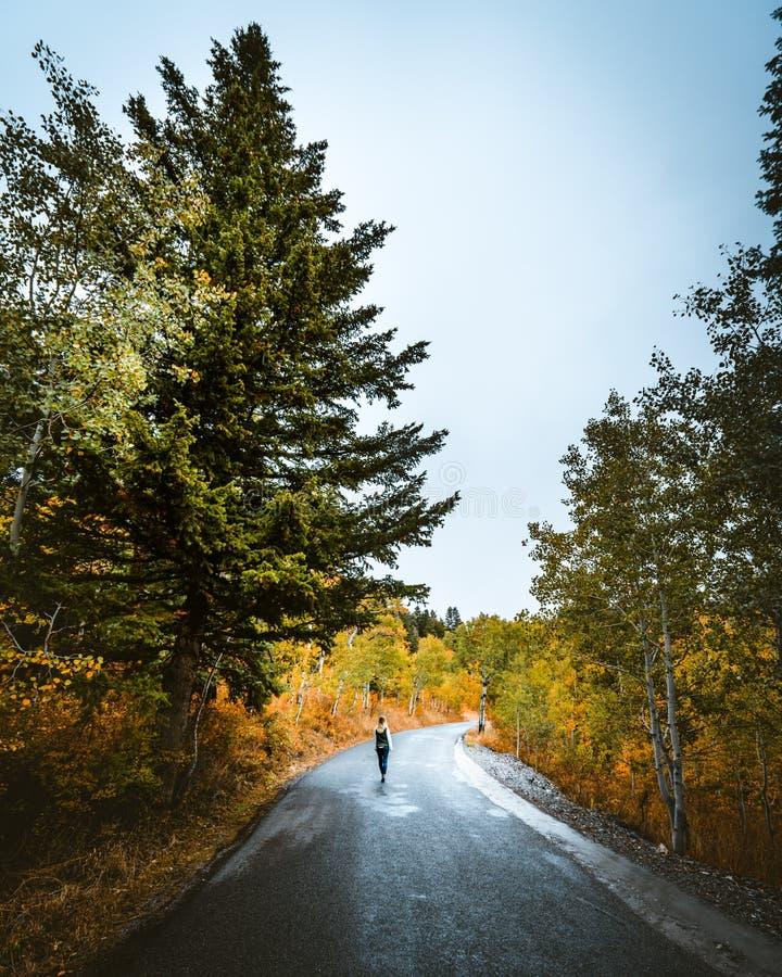 Weibliches Gehen auf eine schmale Stra?e in der Landschaft stockfoto