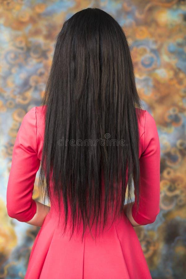 Weibliches langes Brunettehaar, hintere Ansicht lizenzfreie stockbilder