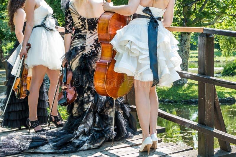 Weibliches musikalisches Quartett in der Natur lizenzfreie stockbilder